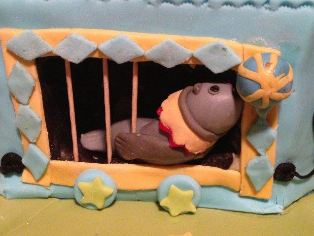 19 Seal on a Circus Cake