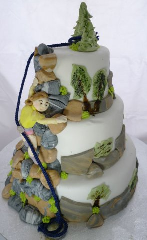 9 Rock Climbing Birthday Cake