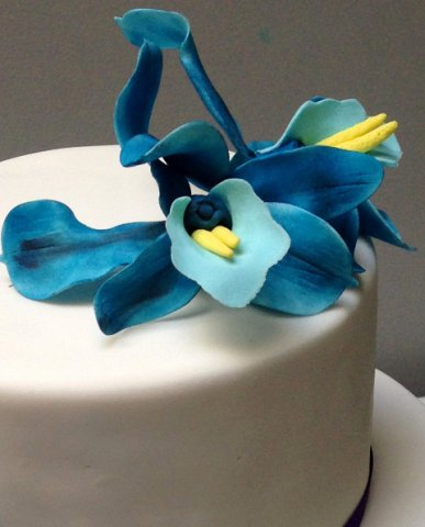 Celebrate Cakes Sugar Flowers - Hand painted spider sugar orchids