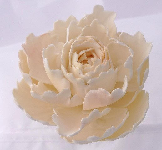 Celebrate Cakes Sugar Flowers - sugar peony rose