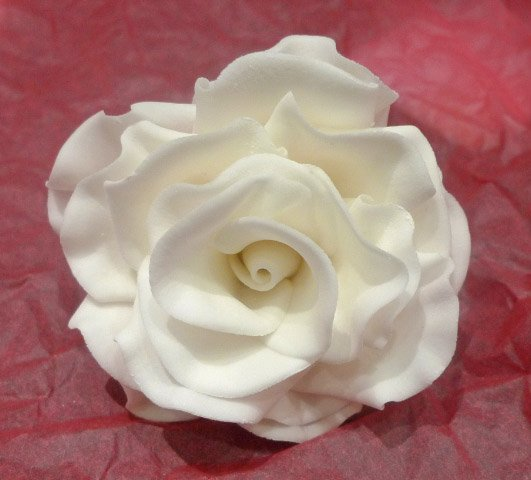 Celebrate Cakes Sugar Flowers - White sugar rose