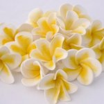 Celebrate Cakes Sugar Flowers - yellow sugar frangipannis